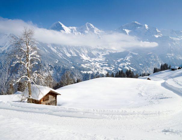 W_029_Kal_14_Sulwald_Eiger_Moench_Jungfrau